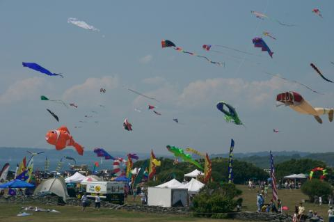 Kite Festival, the Entire Scene